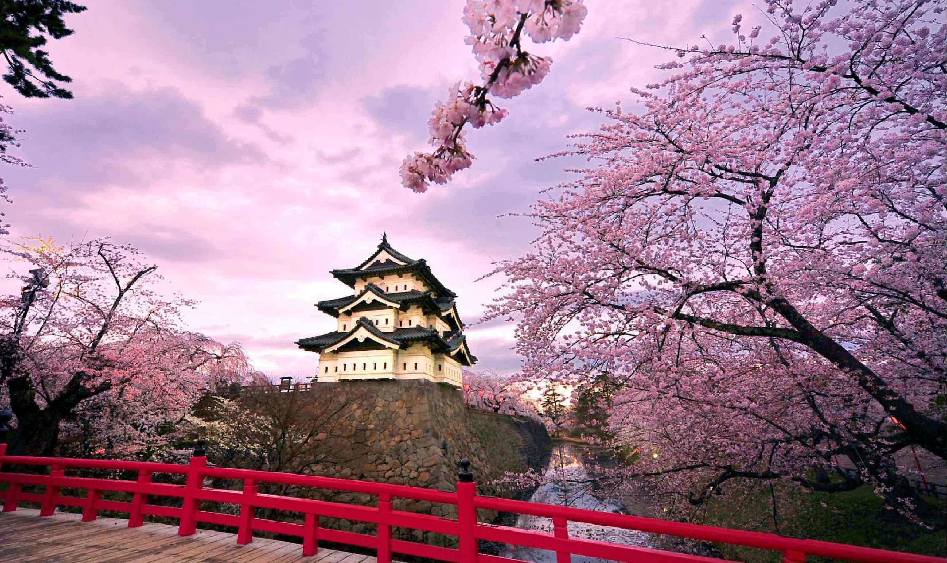 ทัวร์ญี่ปุ่น  ALL STAR SAKURA  IN OSAKA TAKAYAMA  5วัน3คืน (XJ)