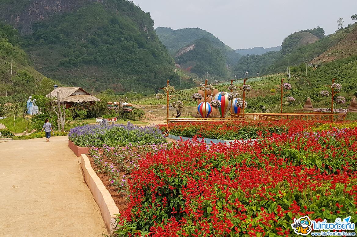 เที่ยวเวียดนามเหนือ สวนดอกไม้แฮปปี้แลนด์ หมกโจว สวนดอกไม้ที่อยู่ท่ามกลางภูเขาอันเขียวขจี