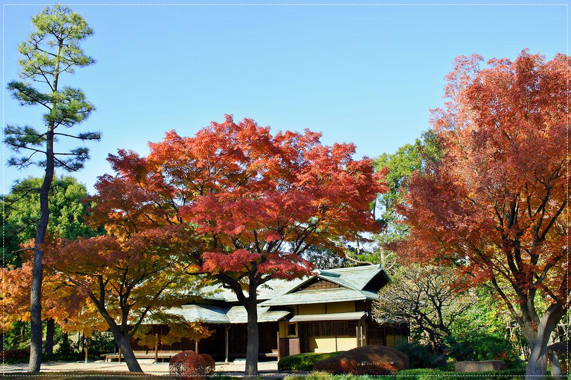 - สวนแห่งพระราชวังอิมพีเรียลฝั่งตะวันออก -