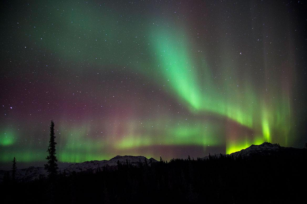 - ดูแสงเหนือ อลาสก้า Fairbanks Denali National Park -