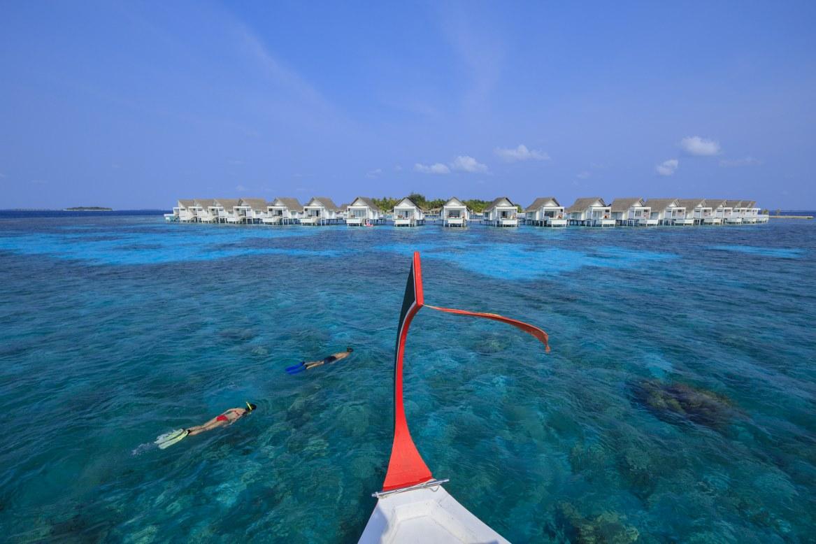 - กิจกรรมดำน้ำและชมปลาฉลามภายในที่พัก ของ เซ็นทารา แกรนด์ ไอส์แลนด์ รีสอร์ท แอนด์สปา มัลดีฟส์  -