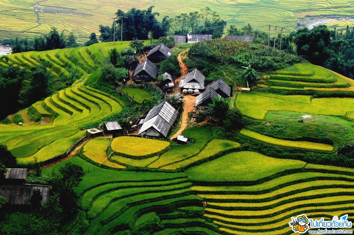 - หมู่บ้านต่าฟาน ซาปา เวียดนามเหนือ -
