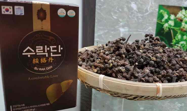 เที่ยวเกาหลี สมุนไพรฮ็อกเก็ตนามู สมุนไพรล้างตับ แพทย์แผนโบราณชั้นเลิศ มรดกเลอค่าแห่งเกาหลีใต้