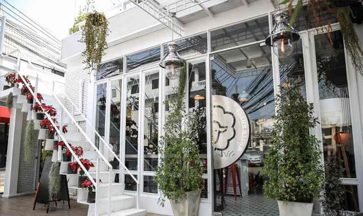 White Sheep Café ร้านคาเฟ่แกะขาวตัวน้อย ร้านใหม่แกะกล่อง ปากซอยลาดปลาเค้า 60
