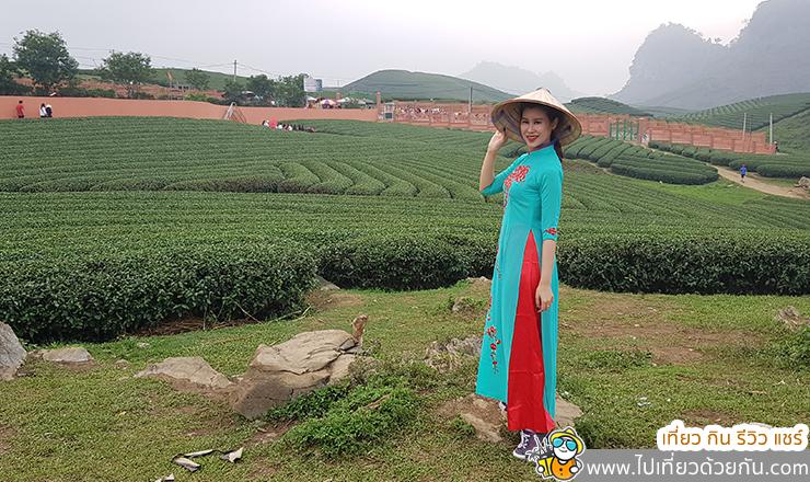 เที่ยวเวียดนามเหนือ เมืองหมกโจว เมืองแห่งทุ่งดอกไม้และไร่ชา เวียดนาม