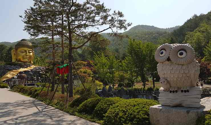 เที่ยวเกาหลี วัดวาวูจองซา เกาหลีใต้ วัดแห่งเศรียรพระรูปสลักจากไม้ที่มีขนาดใหญ่ที่สุดในโลก บันทึกโดย Guinness Book