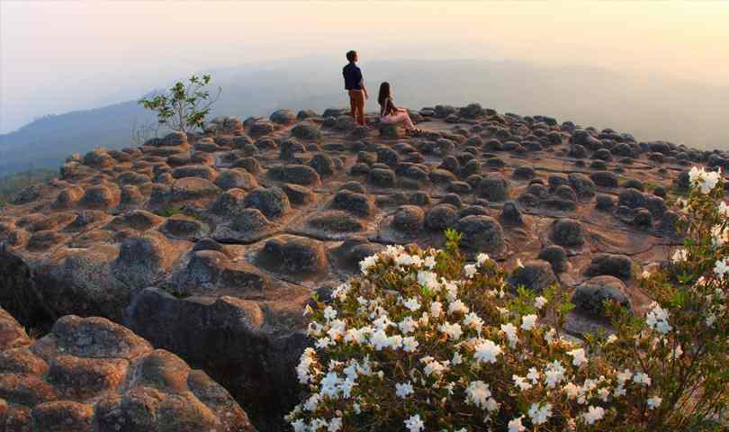 ทัวร์เขาค้อ ภูทับเบิก ภูหินร่องกล้า 2 วัน 1 คืน