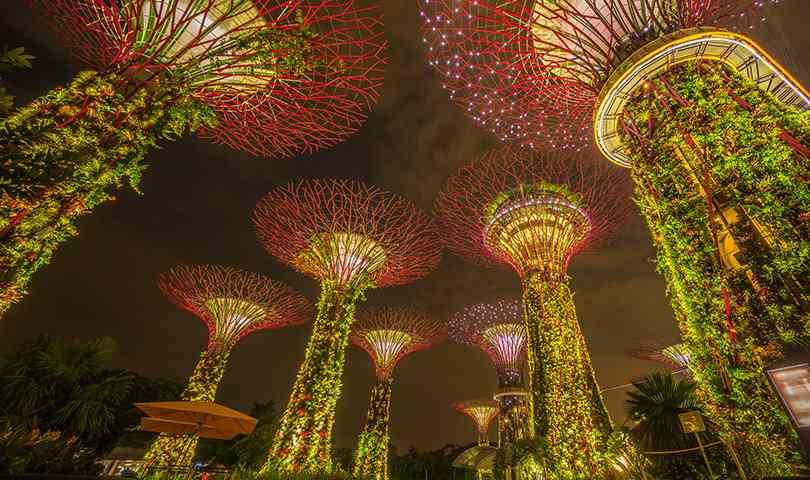 ทัวร์สิงคโปร์ ชมสวนพฤกษศาสตร์ที่ใหญ่ที่สุดในสิงคโปร์ 3วัน 2คืน บิน(SQ)